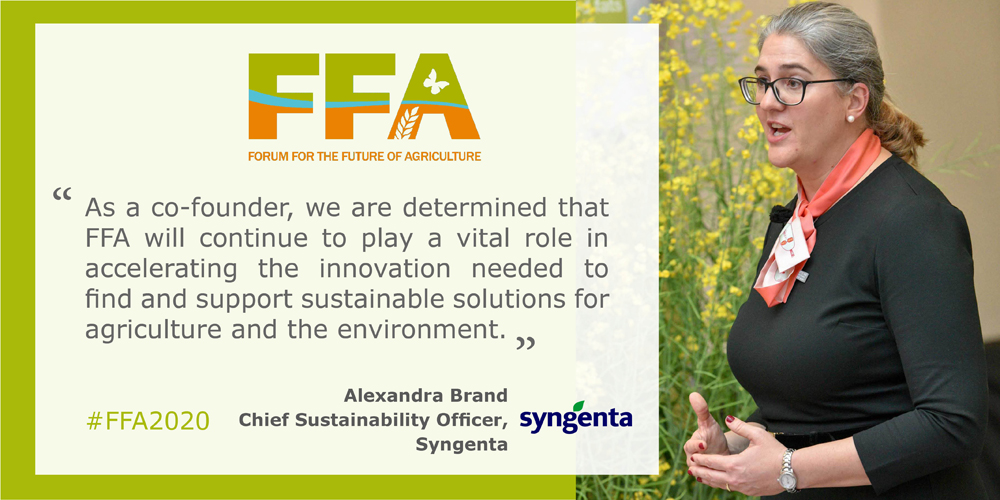 Why is Syngenta still committed to FFA?